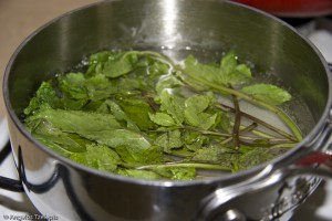 Mint Julep Simple Syrup 1